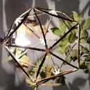 DIY Nature Lamp Shade
