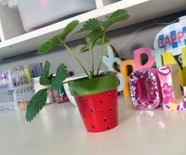 DIY Strawberry Pot & Plant Gift Idea
