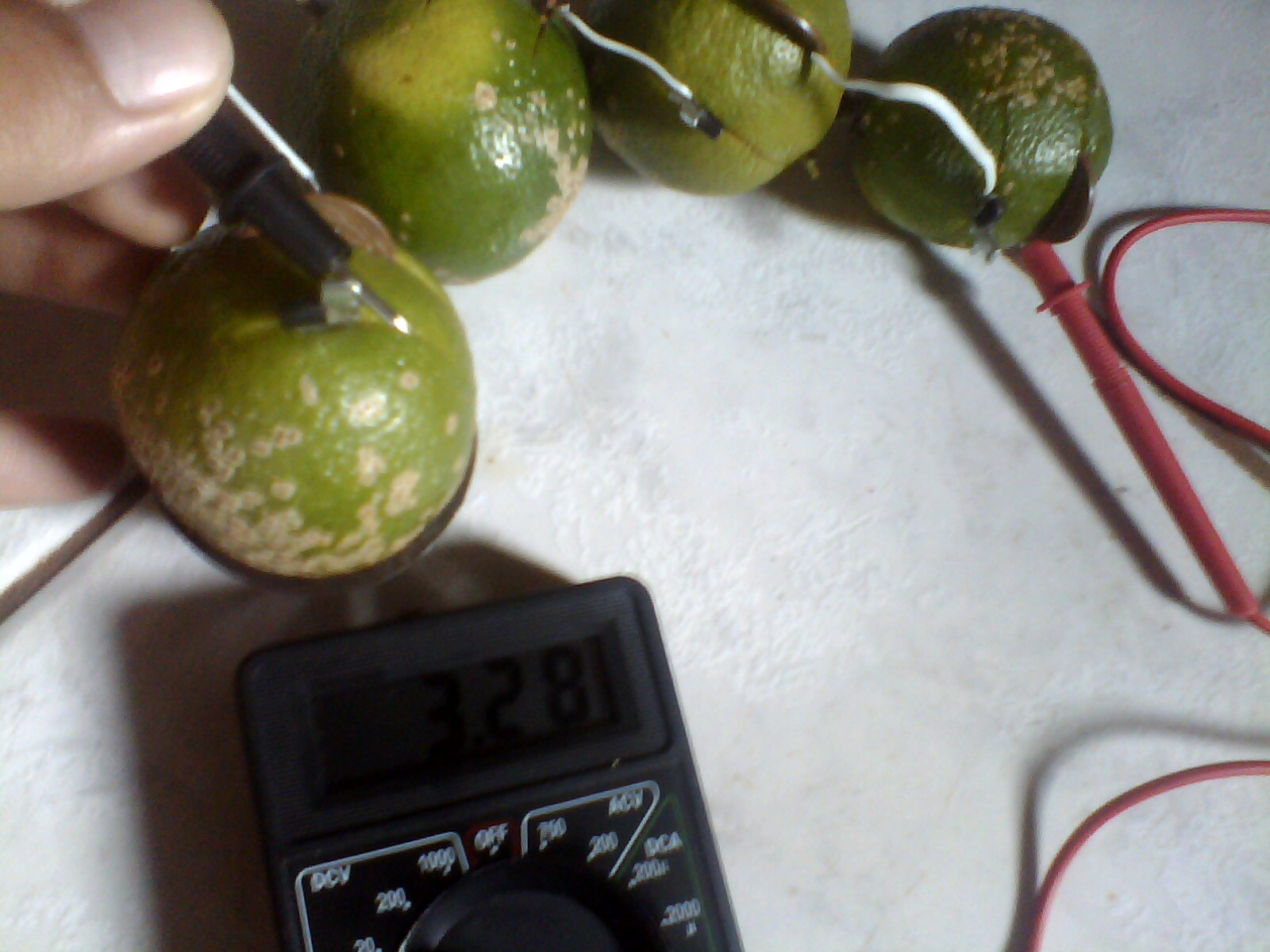 Picture of Simple Electrolytic Cell Made with Citrus Fruits