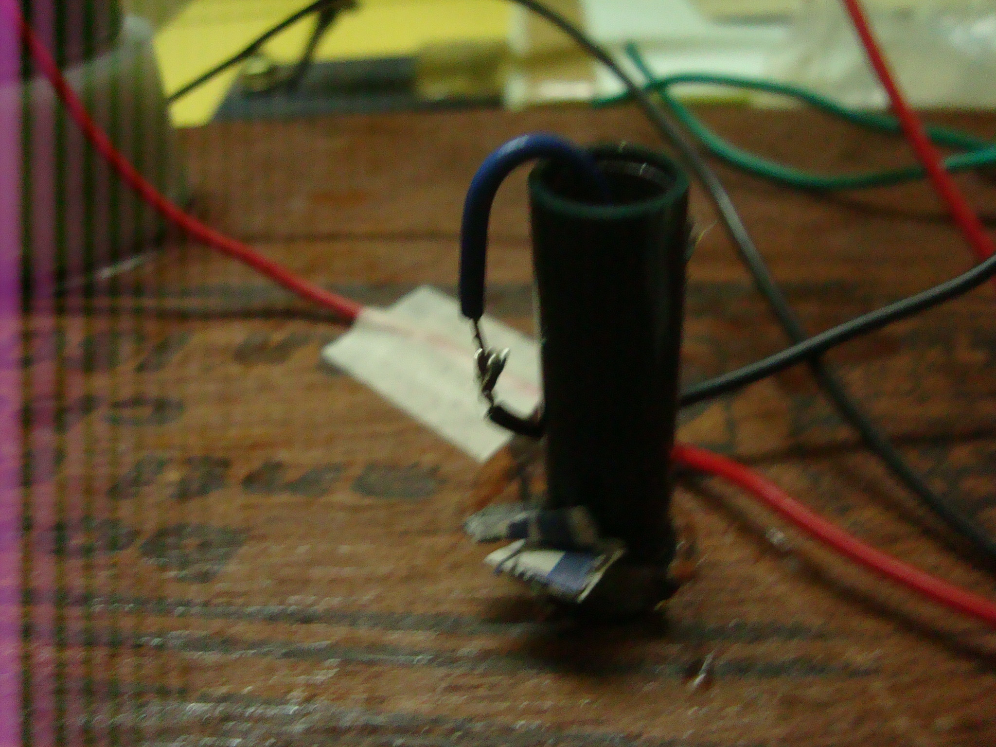 Picture of Pushing the Wires Through the Stem