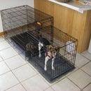Indoor dog toilet