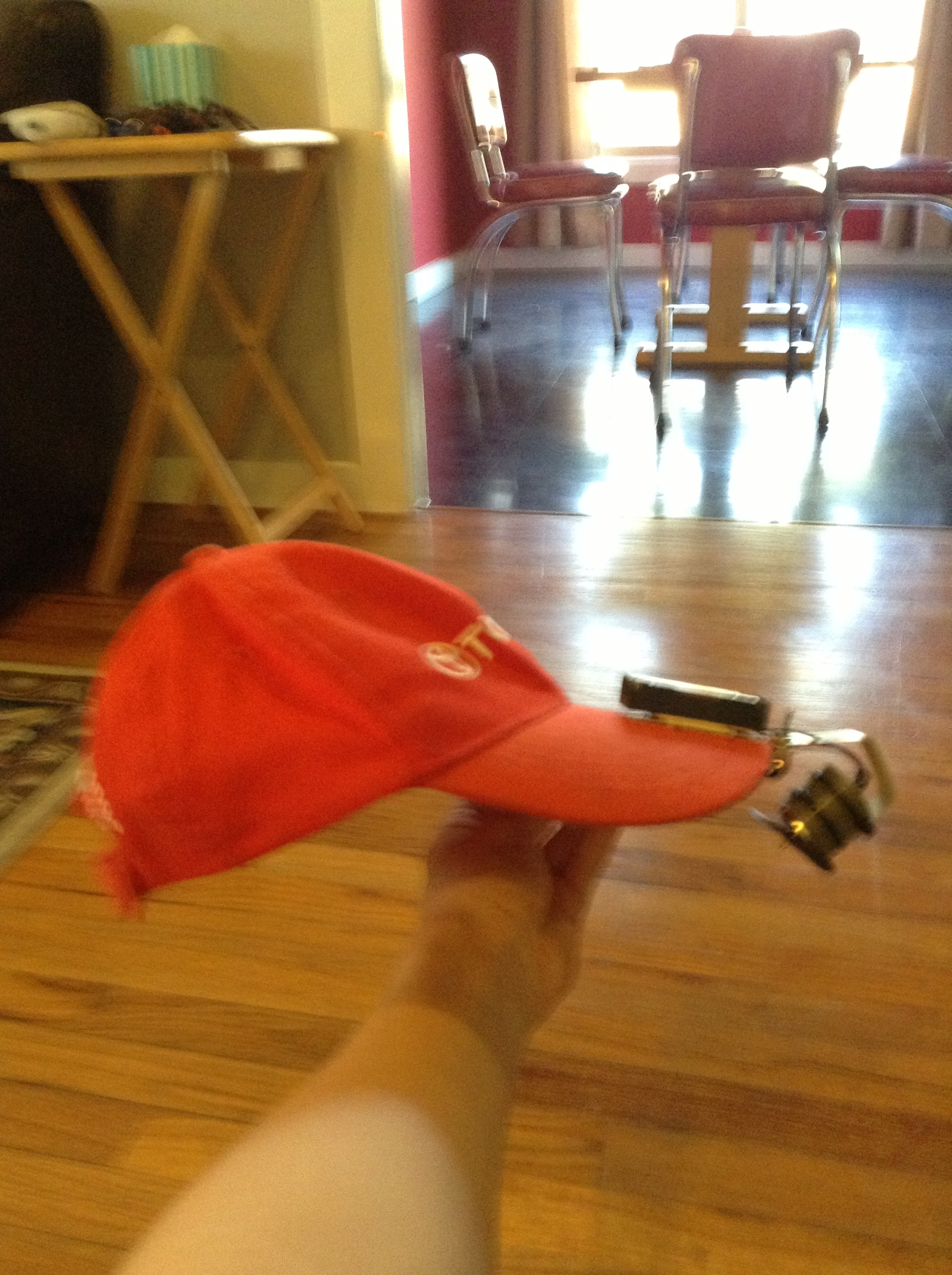 Picture of Fan Hat