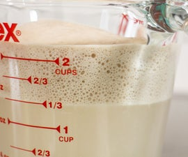 Proofing Your Yeast