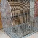 Simple Cage Trap