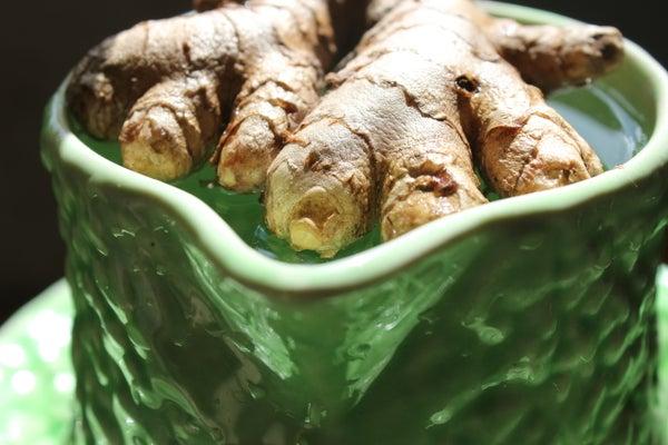 Home-grown Organic Turmeric and Ginger. Cultiver Le Curcuma Et Gingembre Bio. Crecer La Cúrcuma Y El Jengibre Orgánicos