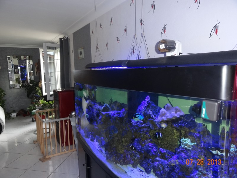 Picture of How to Make an Automatic Fish Feeder