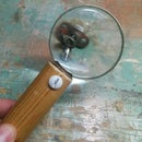 Magnifying Glass From Helping Hands