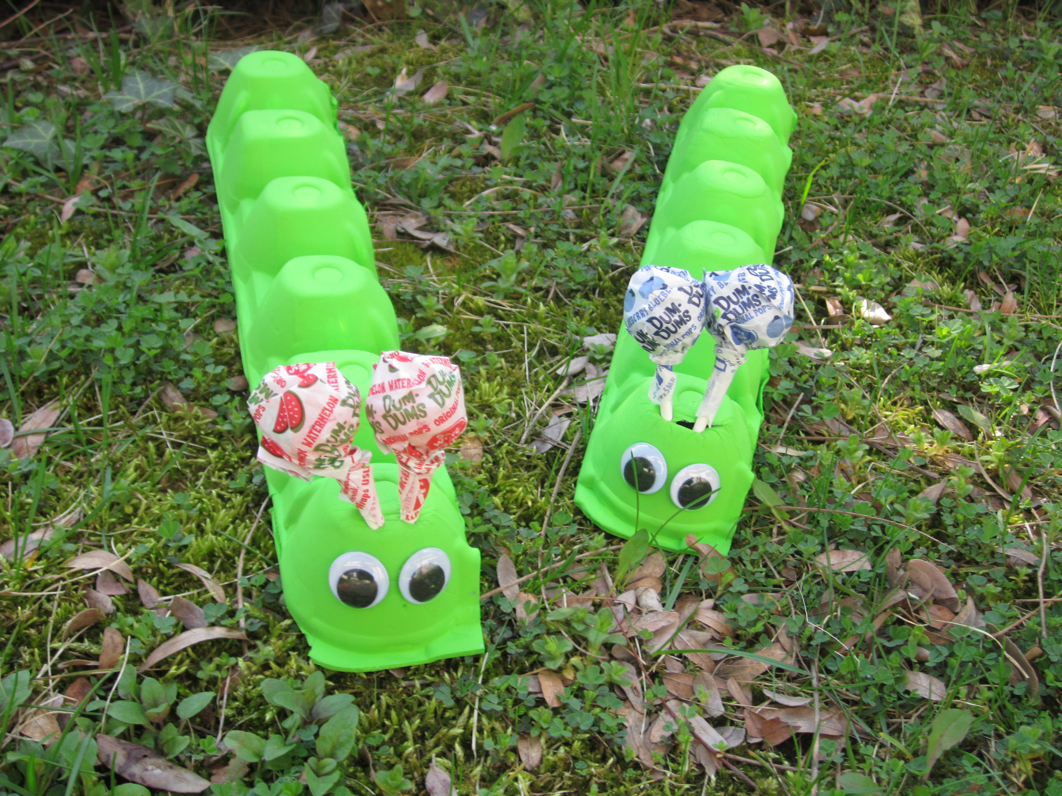 Picture of Summer Crafts for Kids: Egg Carton Caterpillar