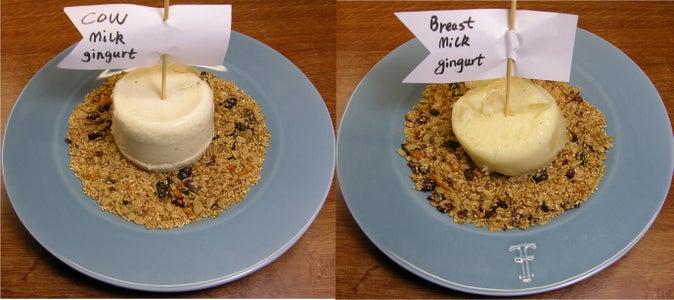 Crock Pot Milk  Gingurt: Ginger Milk Curd Recipe