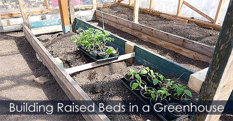 Picture of Step 10: How to Build Raised Beds in a Greenhouse