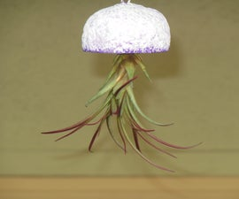 Jellyfish Air Plant Planter