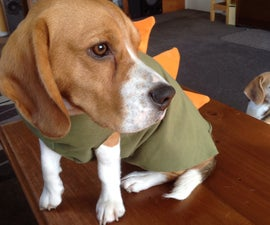 How to Tailor a Dinosaur Onesie for your Dog