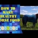 Healthy Horse Food