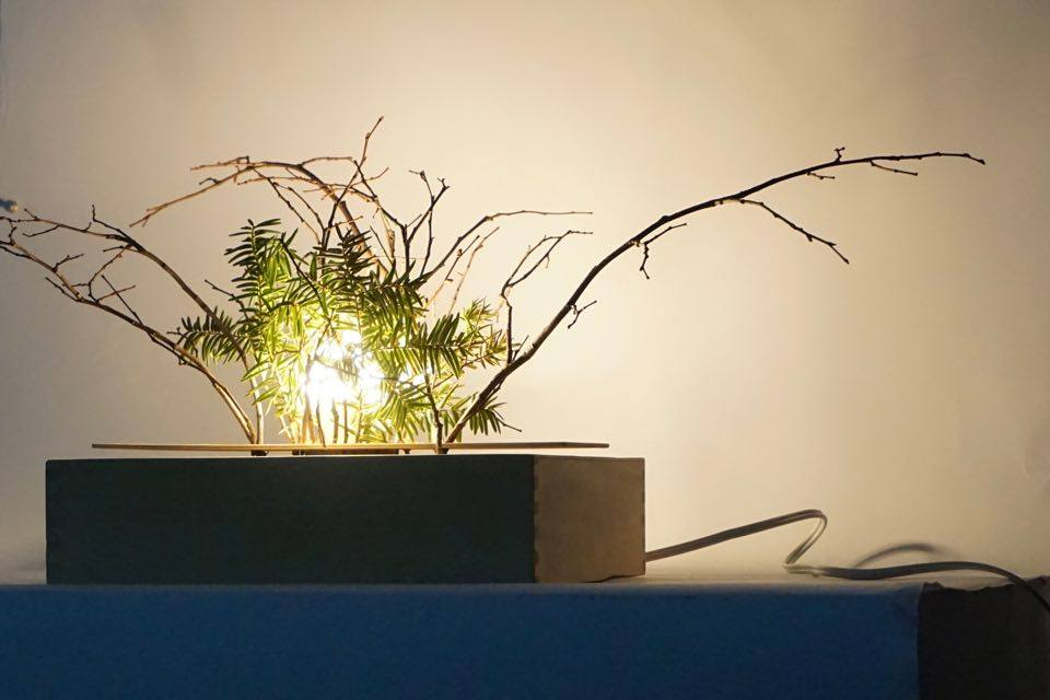 Picture of Forest Lamp