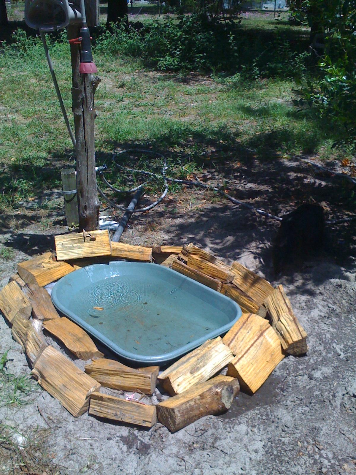 How to make a birdbath - Zeevah S Elite Doggie Swimming Pool Water Bowl Bird Bath