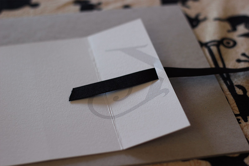Picture of Feed the Ribbon Through From the Front to the Inside…
