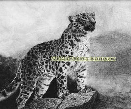 How to Draw an Amur Leopard on Pastel Paper
