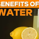 Benefits of Lemon Water || Lemon Water With Honey