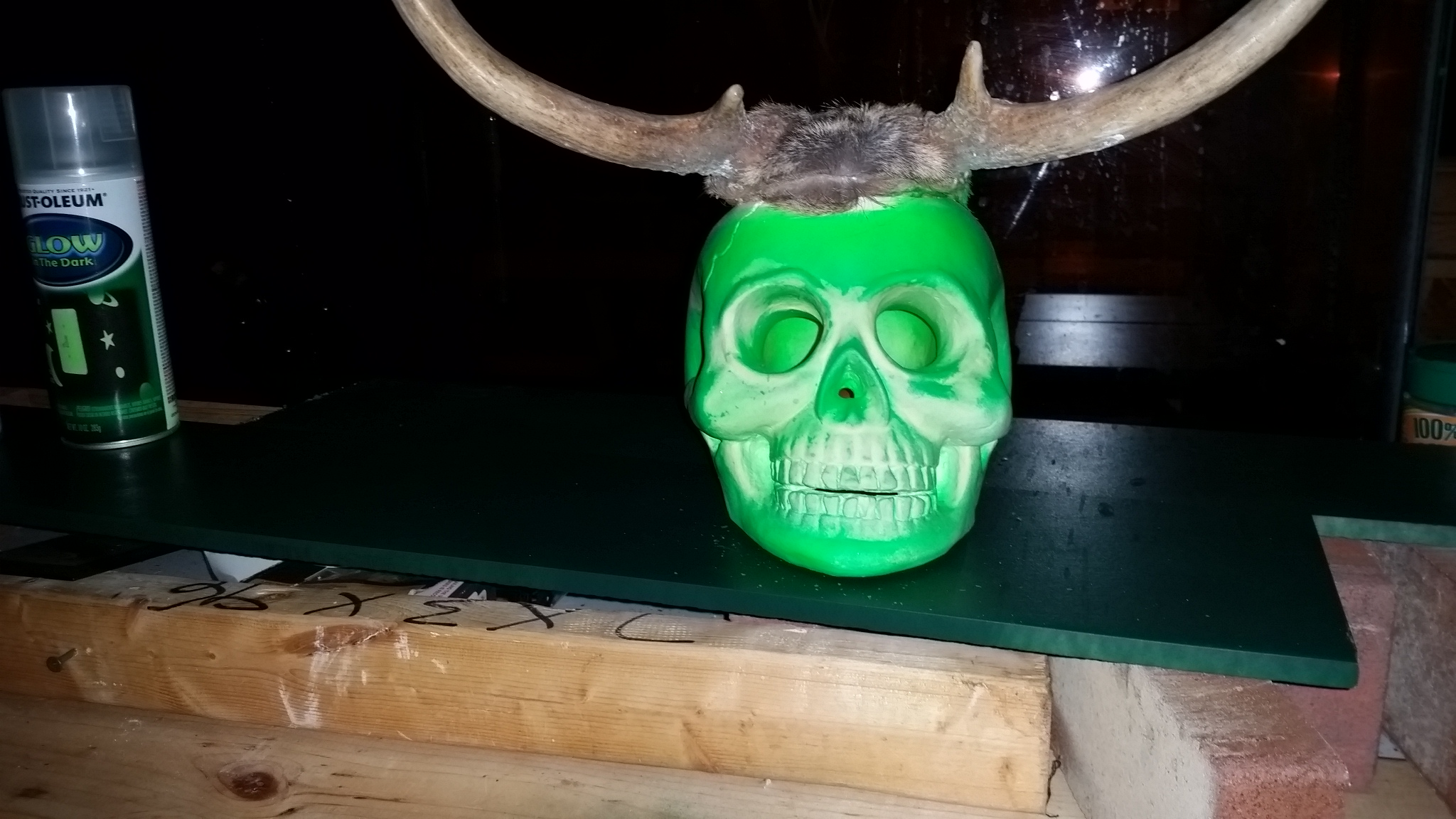 Picture of Fel Skull