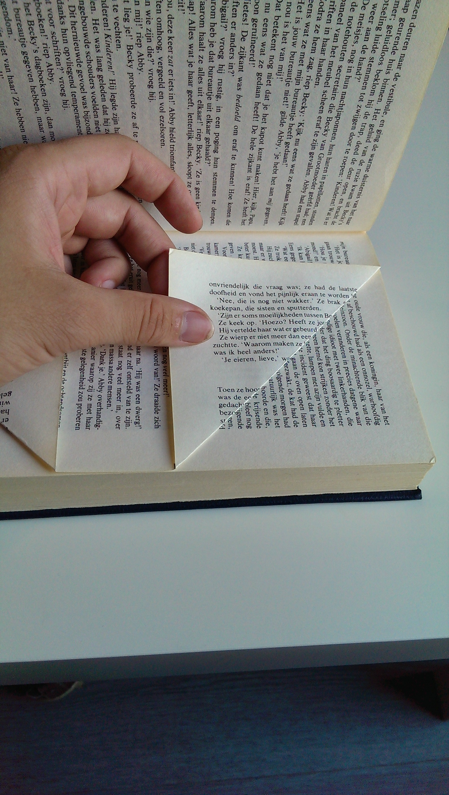 Picture of Folding the Pages