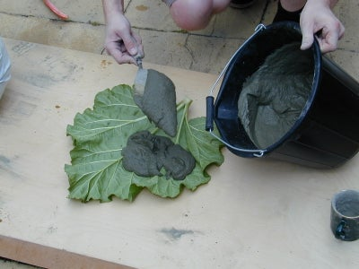 Covering the Leaf