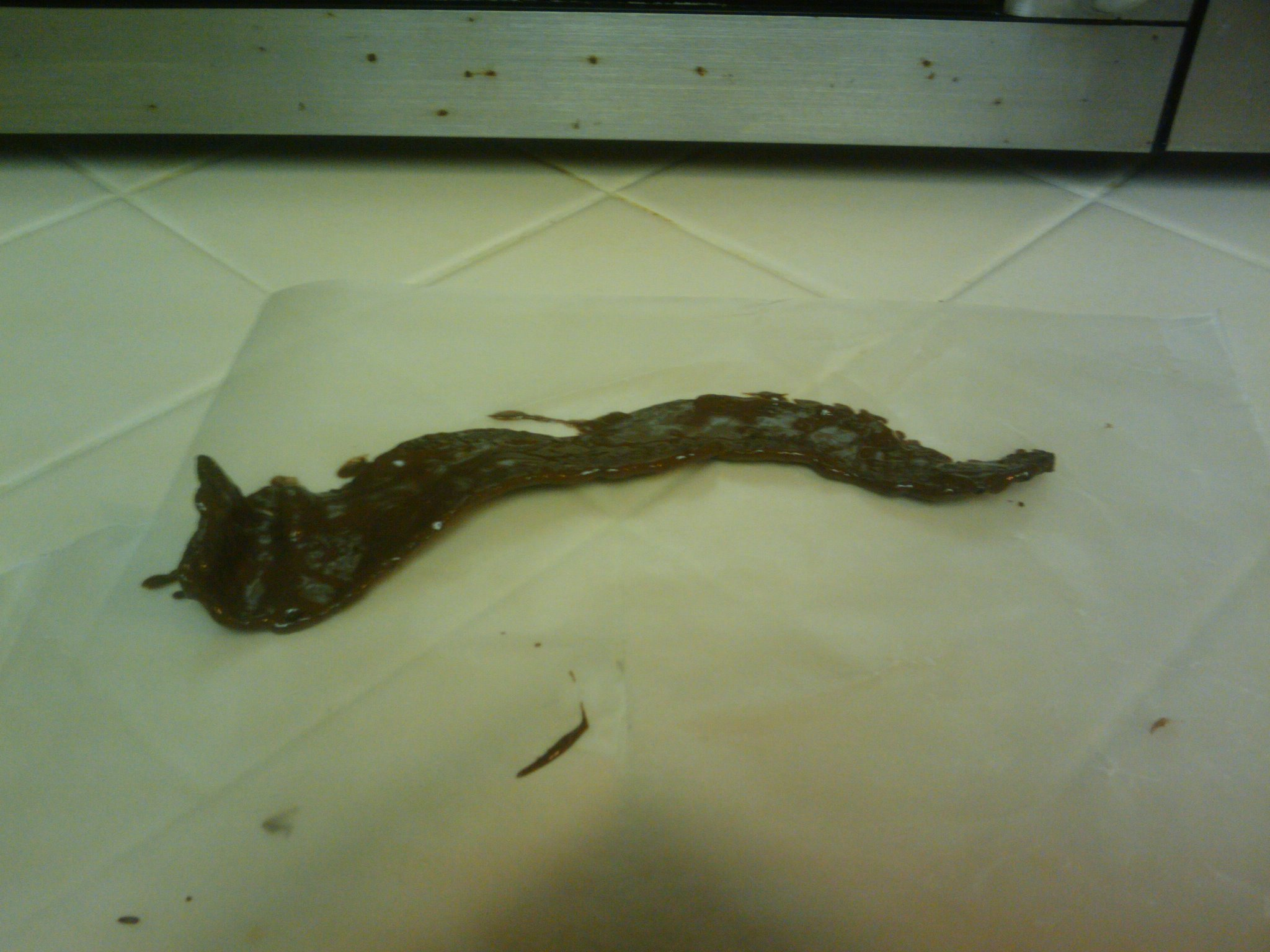 Picture of Dr. Pepper-roasted-chocolate-covered Bacon