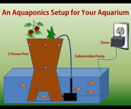 An Aquaponics Setup for Your Aquarium
