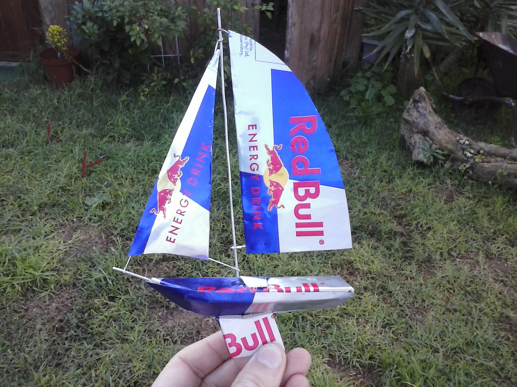 Picture of Red Bull Can-Yacht