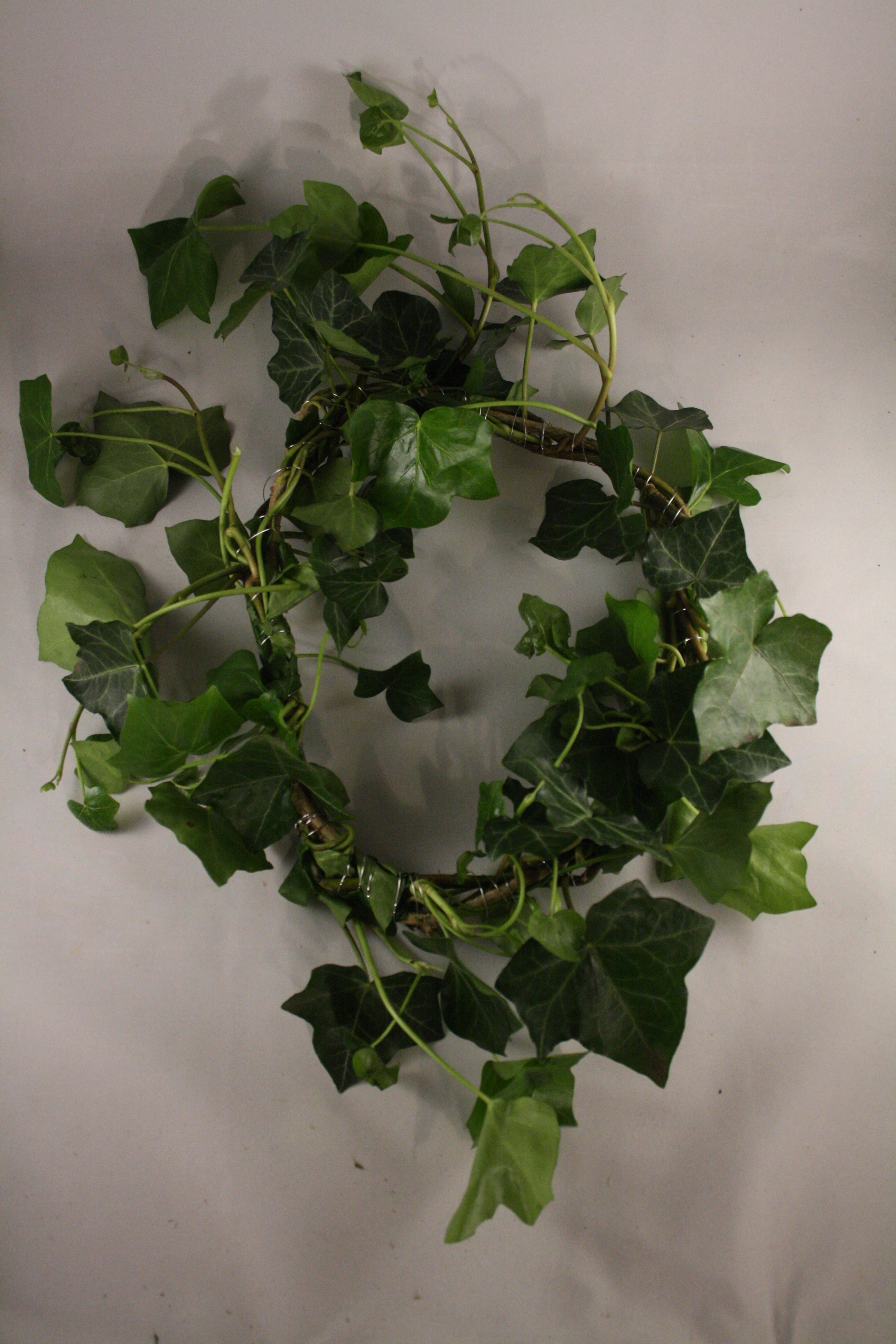 Picture of Winding Your Wreath