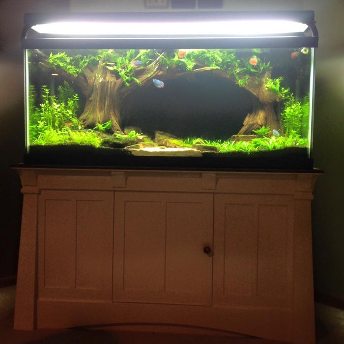 Make A Better Than New Aquarium Stand 24 Steps With Pictures Instructables