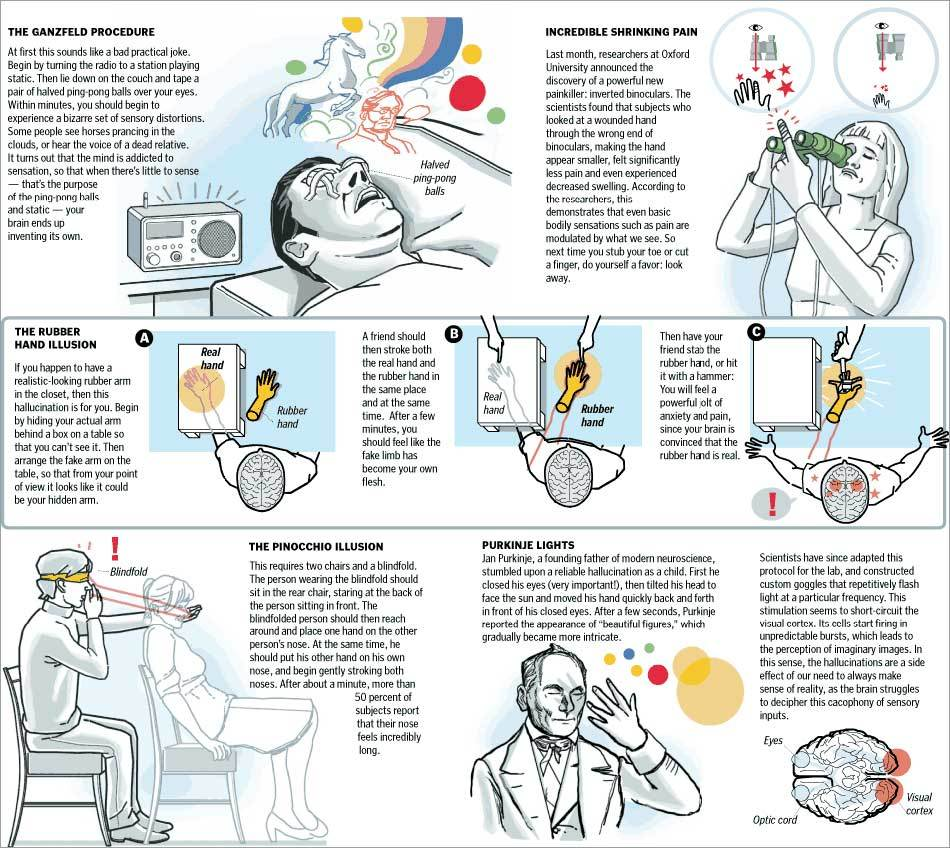 Picture of What to Expect and Other Brain Hacks