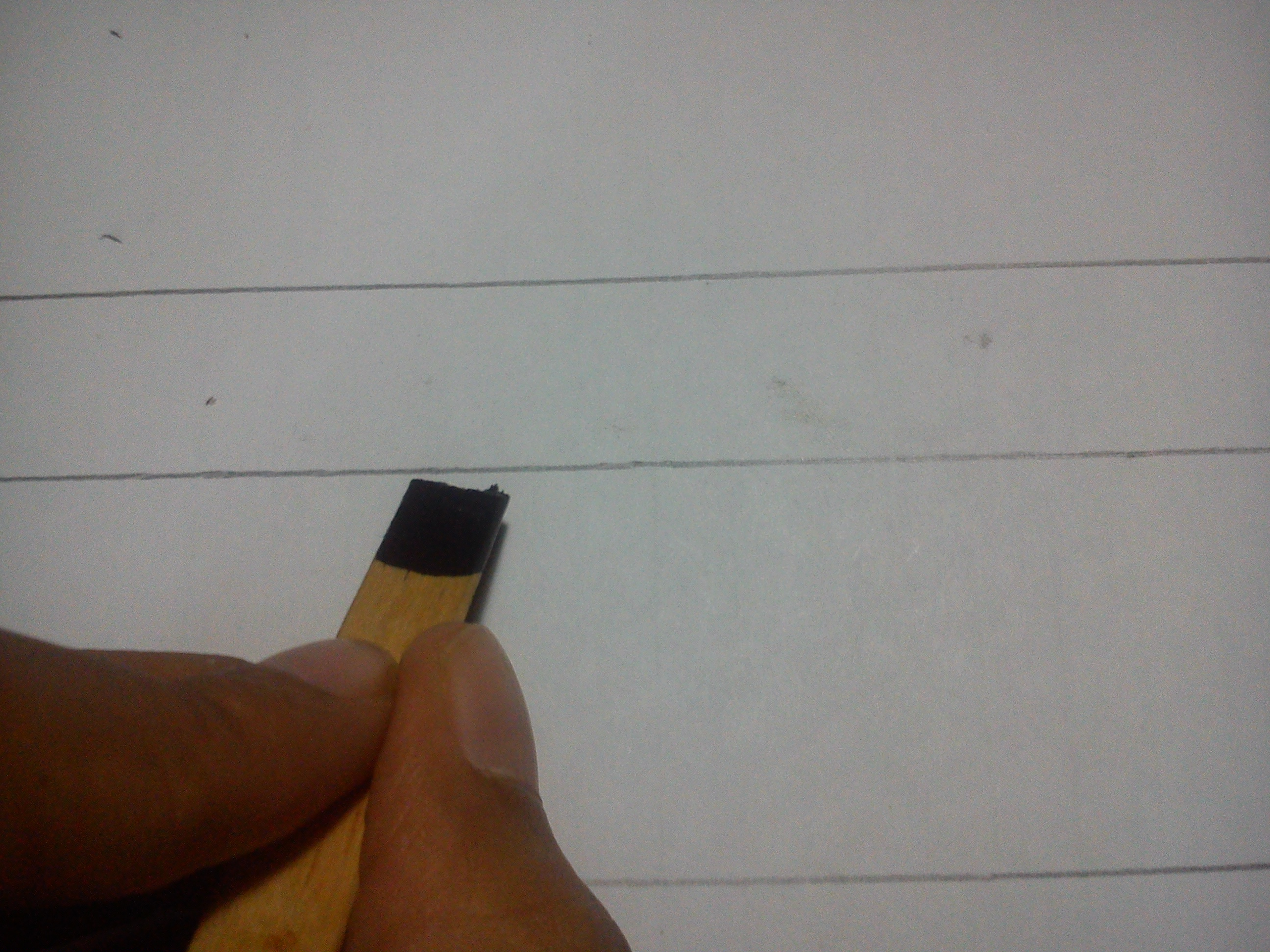 Picture of Writing With the Pen