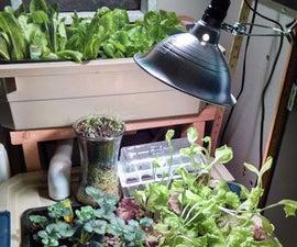 Indoor Aquaponic/Hydroponic Food System