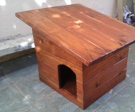 House for a Stray Cat