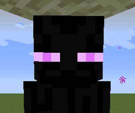 Minecraft: The Smaller Enderman Cage