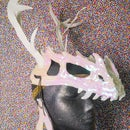 Dinosaur Skull Headdress