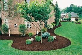 Picture of How to Do Landscaping on Your Yard