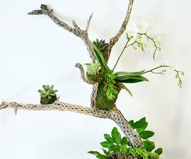 A Fall Table Decoration With Succulents, an Orchid & Other Natural Elements