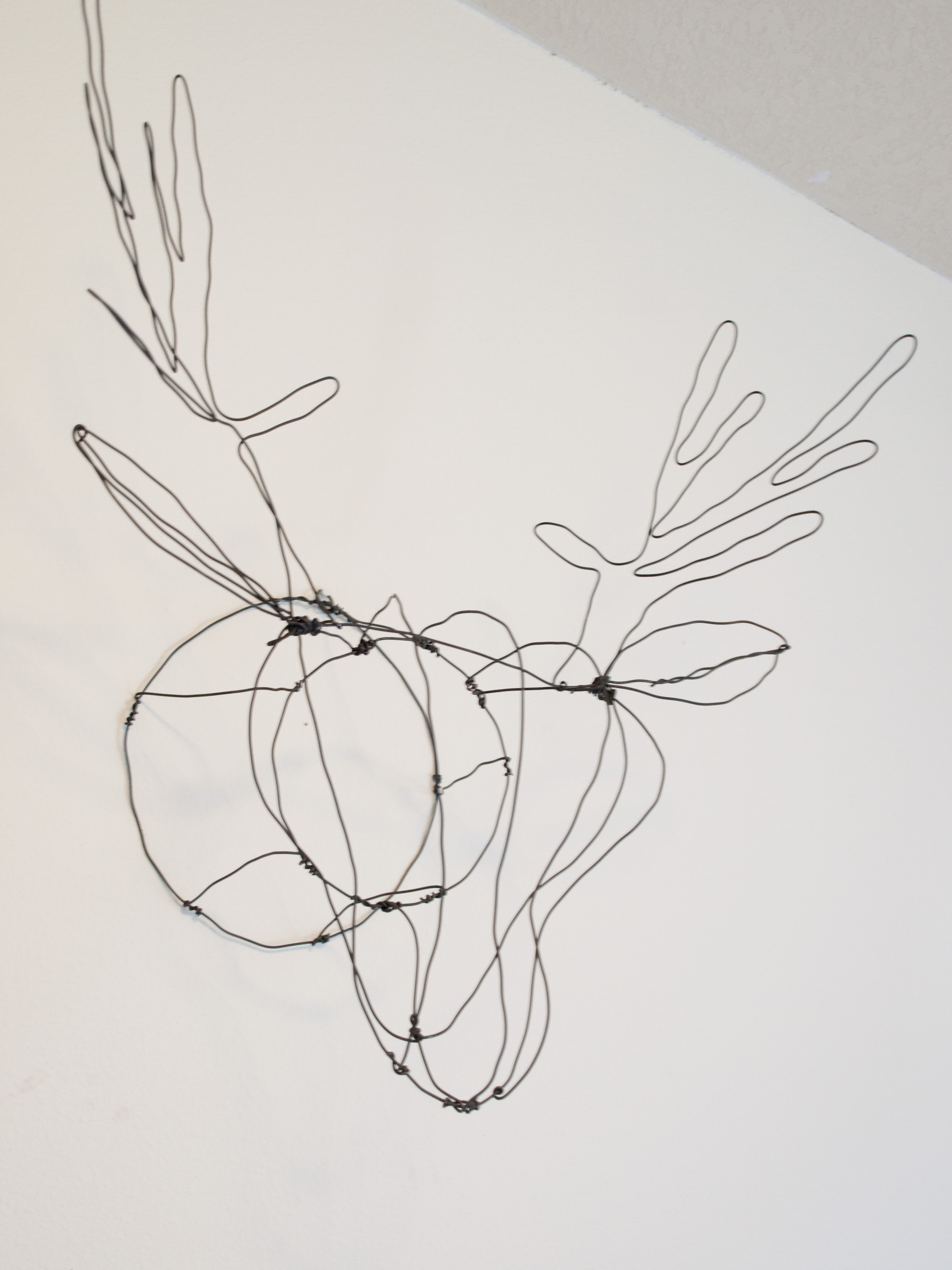 Picture of DIY Wire Faux Taxidermy