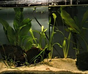 Aquascaping: the Art of the Underwater Garden