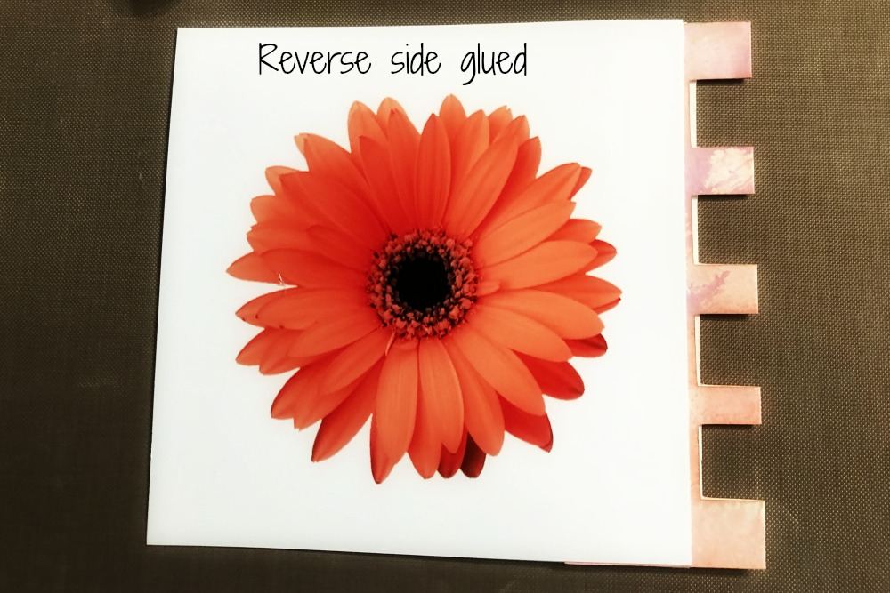 Picture of Glue Photos to Tabs