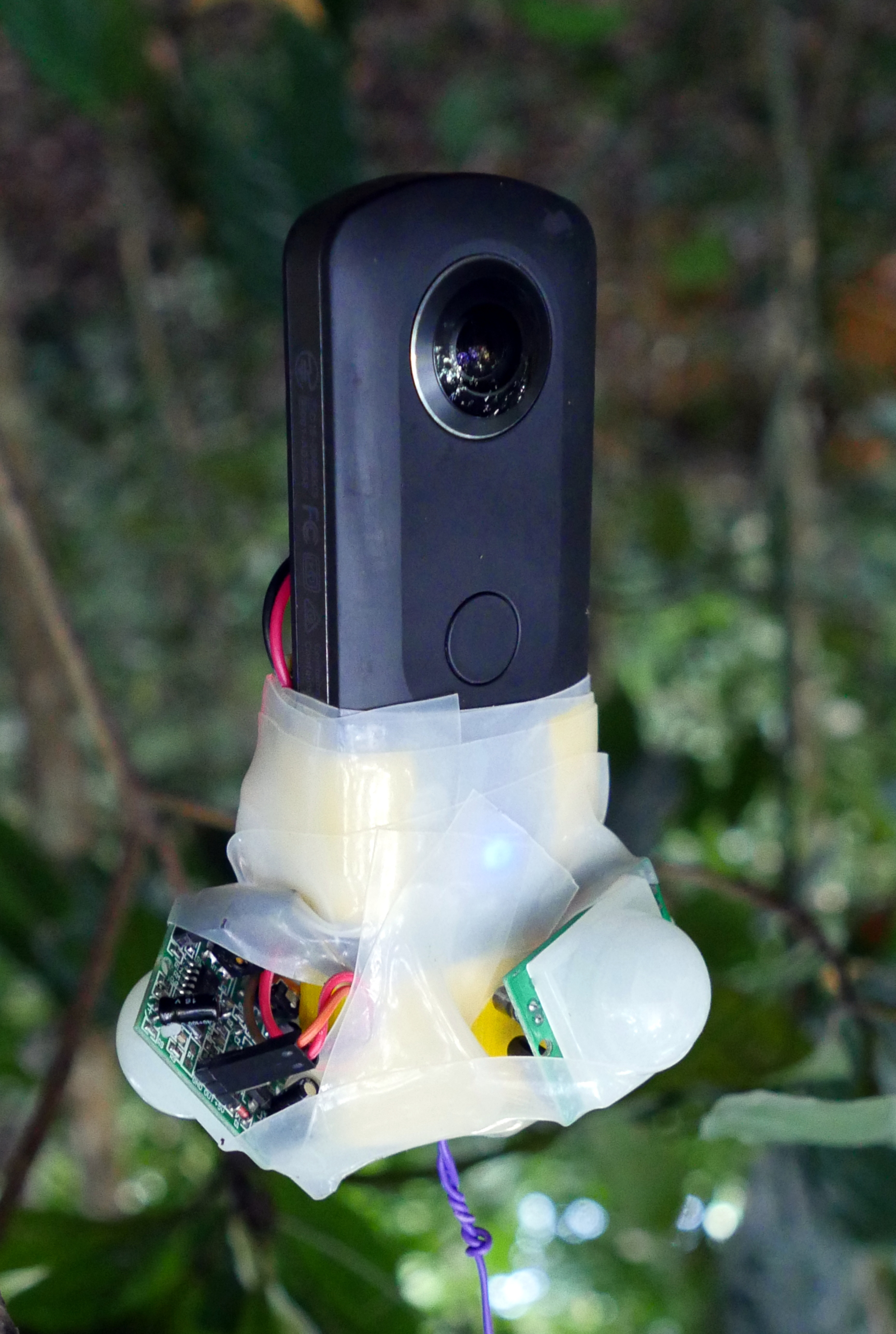 Picture of 360 Virtual Reality Camera Trap