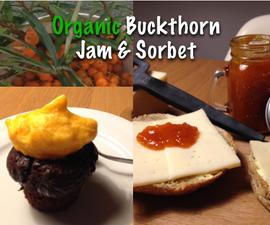 Organic Buckthorn Sorbet and Jam