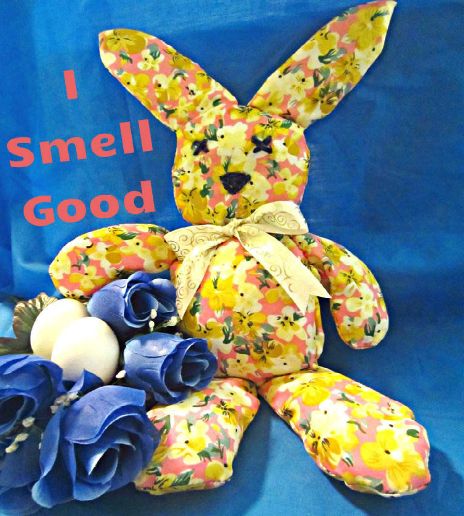"""Picture of """"I Smell Good"""" Mr. Bunny"""