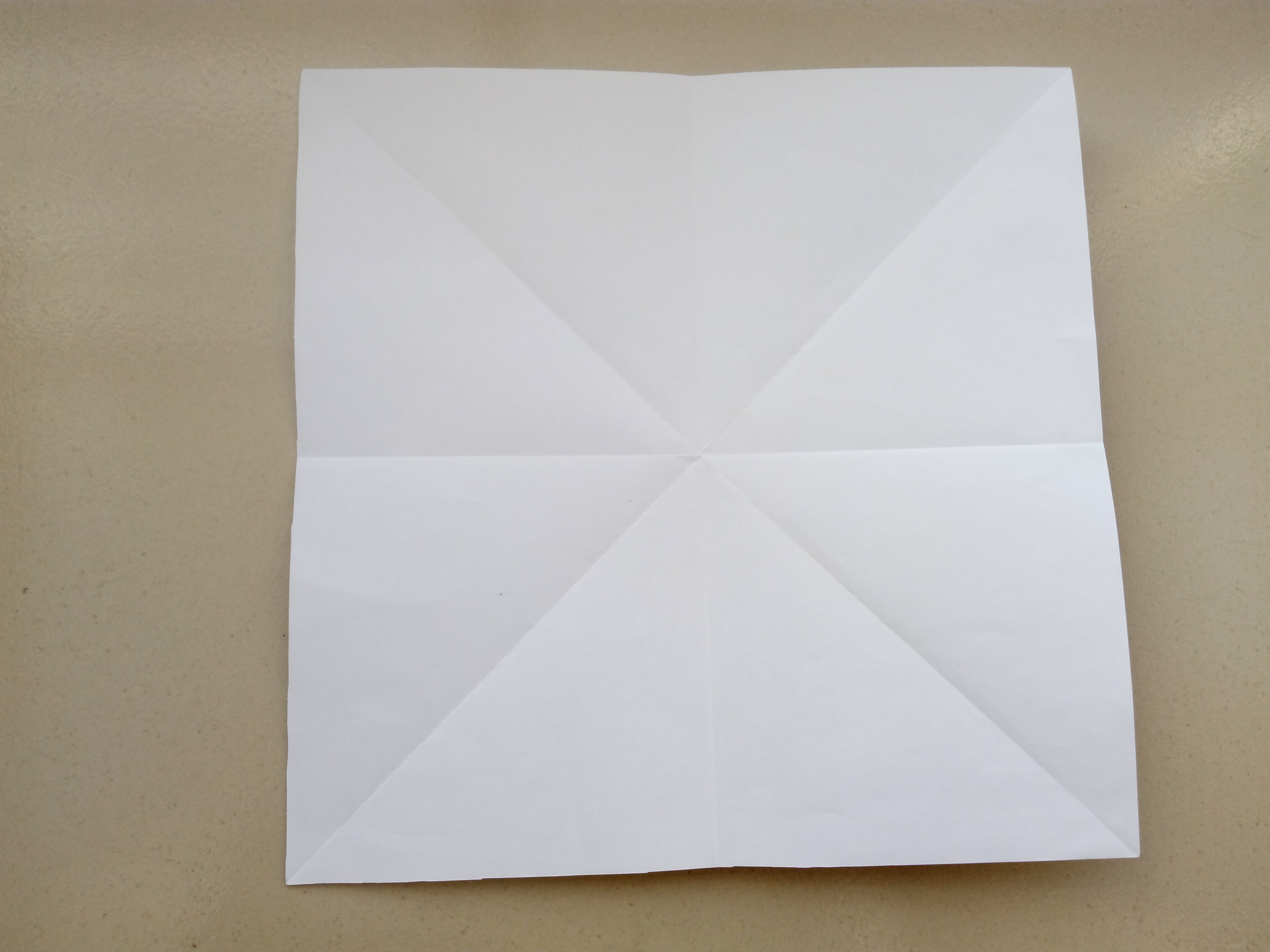 Picture of Fold the Paper in Half Vertically and Horizontally