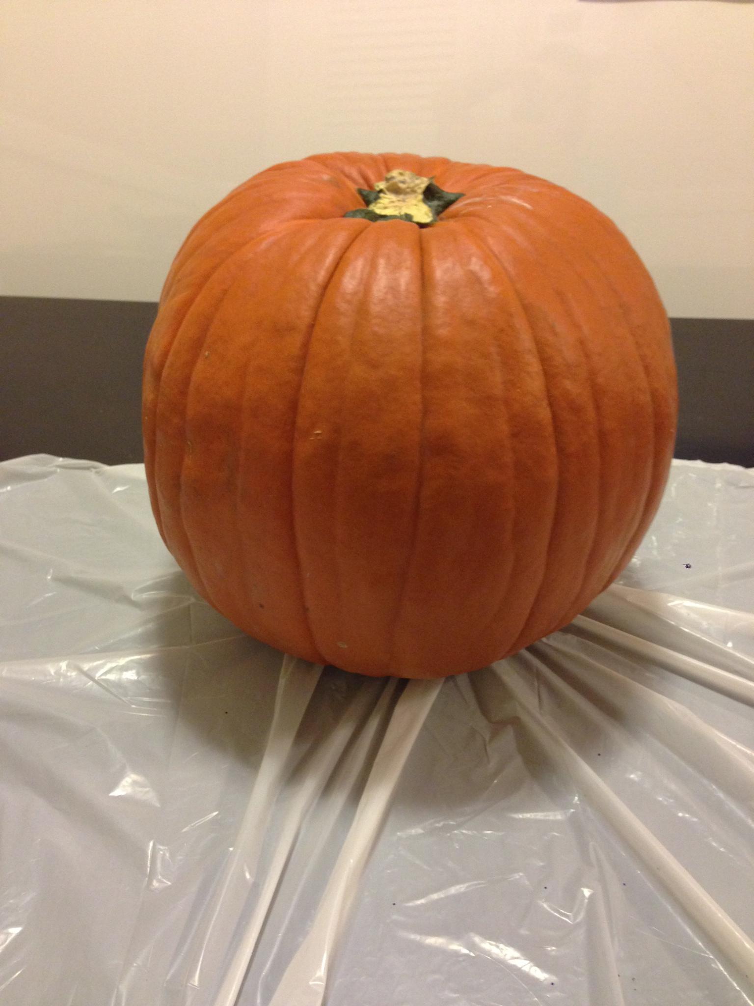 Picture of Prepare the Pumpkin