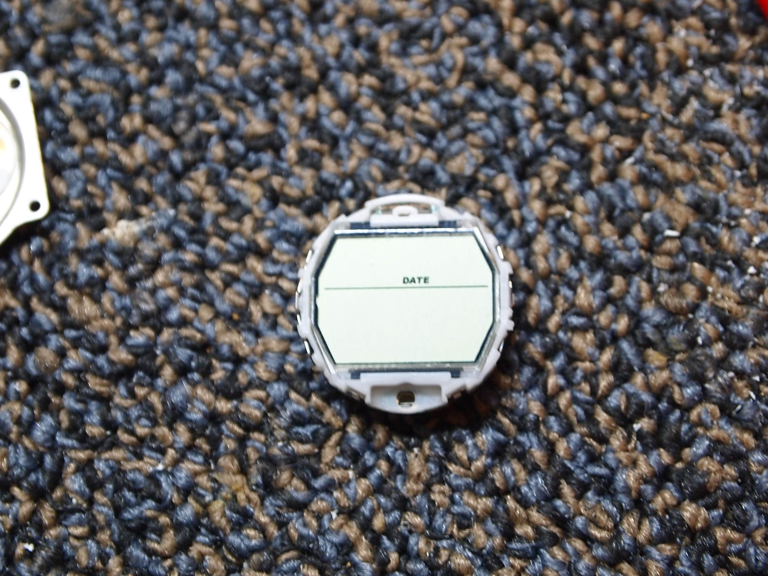 Picture of Prep the Donor Watch