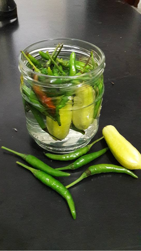 Picture of Chili Bilimbi Pickle