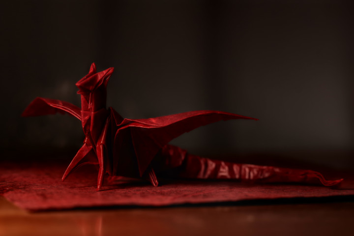Picture of Fold the Dragon