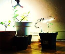 Portable Plant Light
